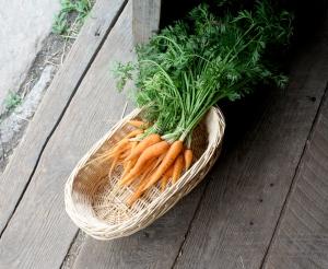 CarrotsontheFloor